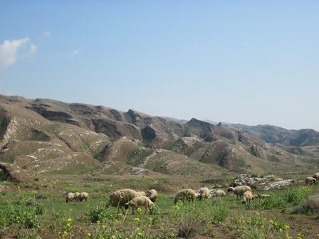 طبیعت مهران